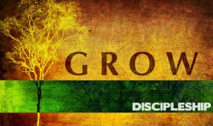 grow-discipleship